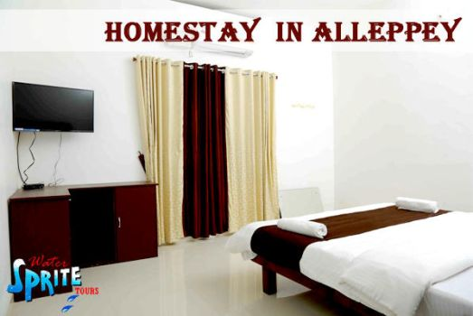 HOMESTAY IN ALLEPPEY by sobinmicheal