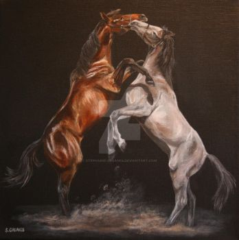 yearling colts at play by Stephanie-Greaves
