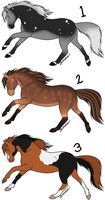 HALF PRICE! Point Adopts - 2/3 by Sandy--Apples
