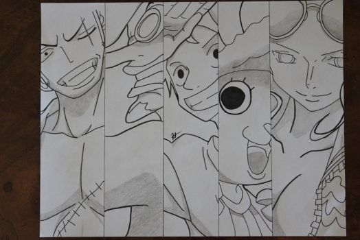 The Straw Hat Pirates [Completed] by Simba650