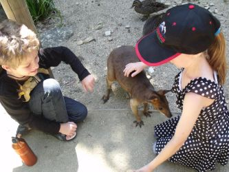 Wallaby and kids by Coley77