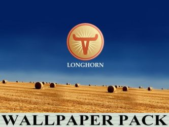 Longhorn Wallpaper Reworked (3840 px) by CitizenJustin