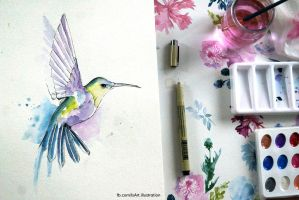 Colibry watercolours by Vegeta3690