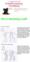 Drawing A Wolf Tutorial Part 1 by ARVEN92