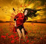 In the poppies by levifreelife