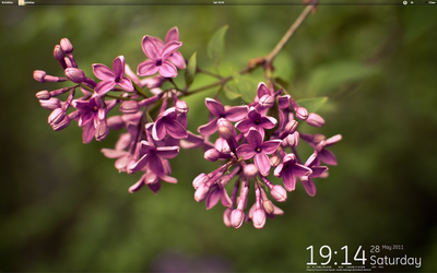 Gnome Shell 2011-05-28 by amg