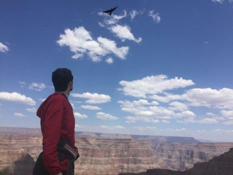 Grand Canyon Eagle and Red  by emmejay-fwz