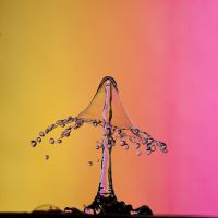 Dripping 2012 by Blubdi-Photography
