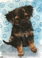 Scruffy Pup 1 ACEO by Pannya