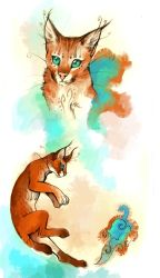 Fantastical caracal by cursed-sight