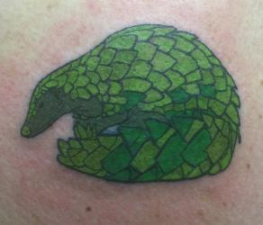 Pangolin Tattoo by PeridotPangolin