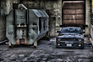 Shelby In HDR by kanokus