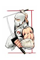 Storm Shadow 5 by RobertAtkins
