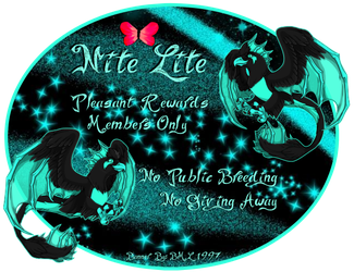 Nite Lite by Bml1997