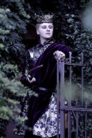 GoT: Joffrey Baratheon I by Chi-fuyu