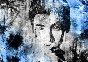 Siwon's portrait by Zephander