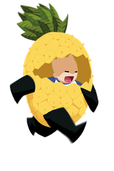 Pineapple Run by theCHAMBA