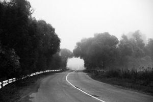 A road ends in the fog by Erfea