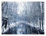 Refelection of Winter updated by mr-sarcastic1984