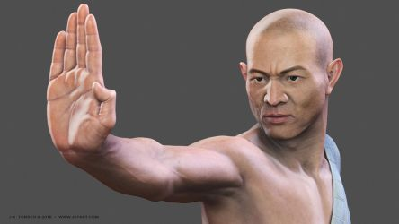 Shaolin: Remastered 008 Close-up by EtherealProject