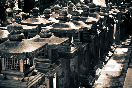 Stone lanterns in Nara by NanoRoux