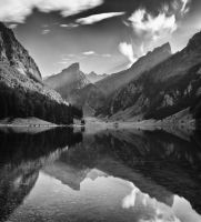 Beuty in the silence BW by Andre99