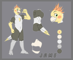 Jame Character Sheet by jamejarrs