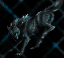 Wolf of Shadows Leap by TheTyro