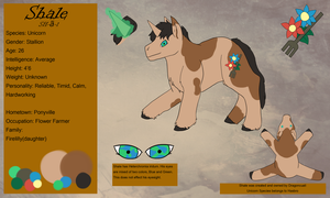 Reference Sheet - Shale by DragonCuali