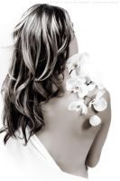 White Orchids by misdirekted