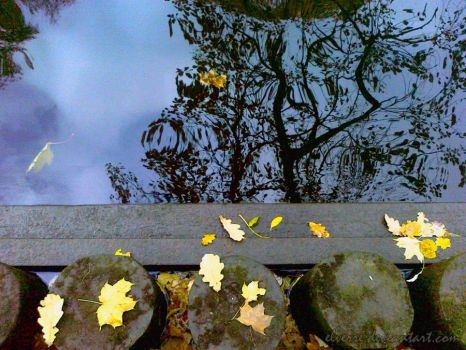 Autumn reflections by Elverre