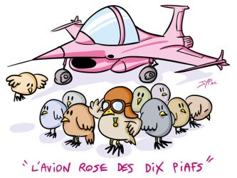 Avion Rose by jypdesign