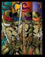 Ninja Turtles  Tmnt Colors by likwidlead