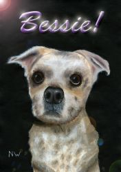 Poster made from my Memorial painting of Bessie. by Hoover1979