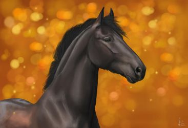 Friesian with the colours of Autumn by xSapience