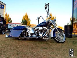 Classy Bagger by Swanee3