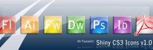 Adobe CS3 Shiny Icons by MrTsu