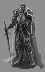 DnD Series: Paladin by OrionsHavoc