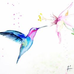 Humming bird on the fly by TwinDrops