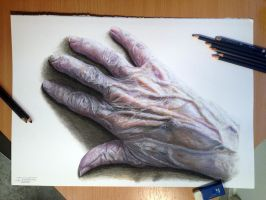 Old Hand Color Pencil Drawing by AtomiccircuS