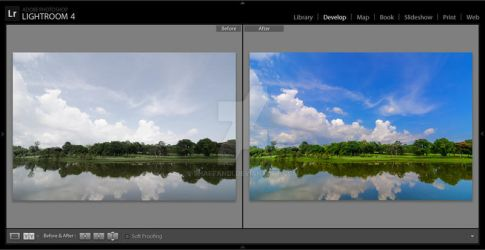 Landscape Preset for Lightroom