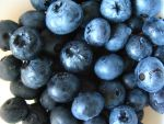 blueberries 02 by synesthesea