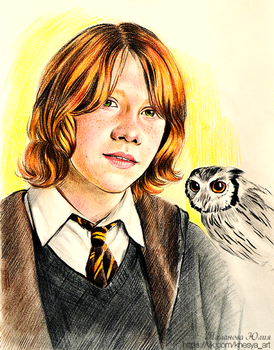 Ron Weasley. Harry Potter by Knesya27