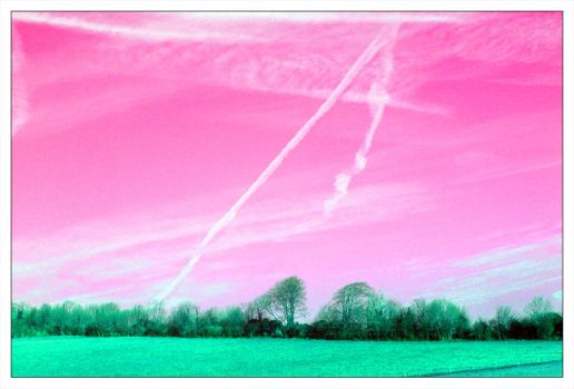 :: Pink Skies :: by x-vegan-x