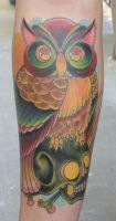 sick little owl tatty by annielicious