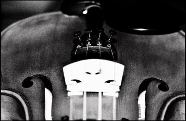 Black and white violin by monotheist
