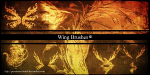 Wings Brushes by priesteres-stock