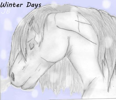 Winter Days -- For Macdvl by Silent-Death-Dreams