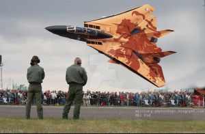 Dutch Air Force  F-14 Tomcat low pass by ghufranali