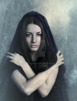 Cold by ROSASINMAS
